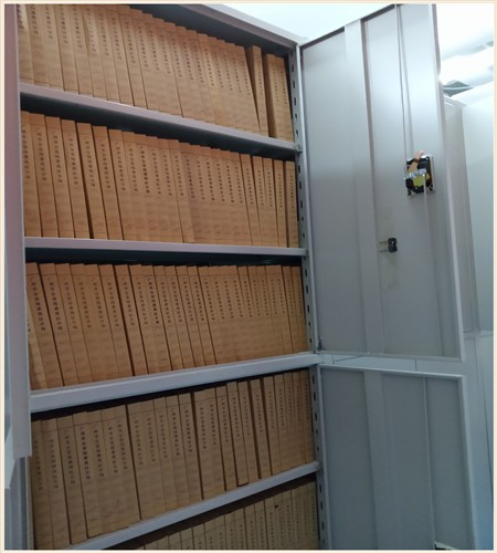 石渠国标档案密集柜规格